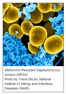 National Action Plan for Combating Antibiotic-Resistant Bacteria mrsa